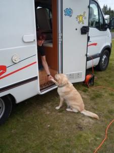 Saluti del padrone del campeggio a Selfoss