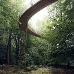 Treetop Experience passerella
