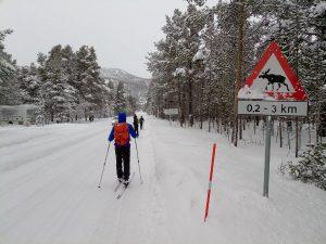 Sciare in strada in Norvegia