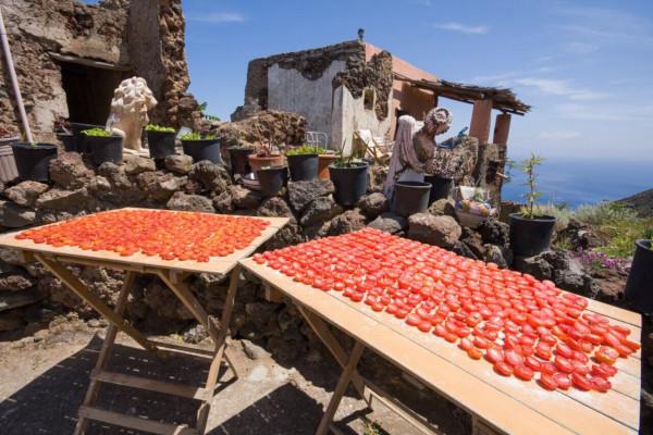Pomodori che si essiccano al sole