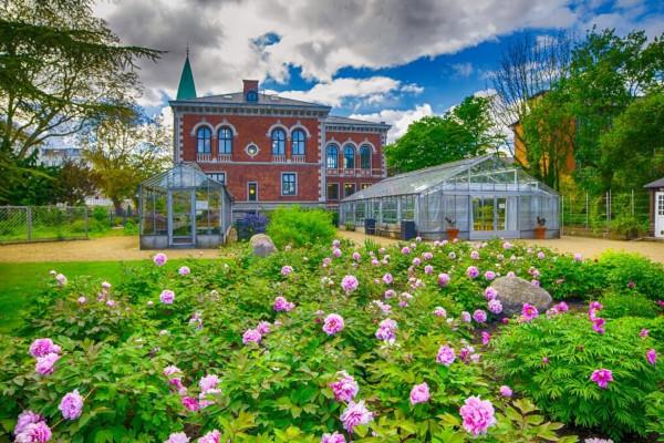 Giardino botanico di Copenhagen